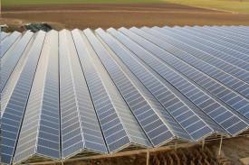 Placas solares integradas en la cubierta del invernadero