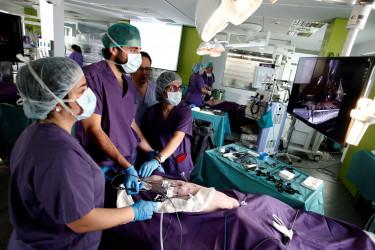 23/11/2017.- Imagen de cirujanos participaron en la LXI reunión de la Sociedad de Cirugía de Galicia - FOTO: EFE
