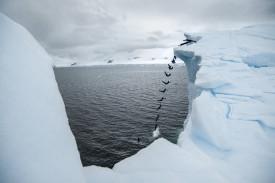Imagen de la Antártida - FOTO: EFE