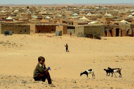 Desoladora estampa de un niño africano viendo la vida pasar, dejándola escapar