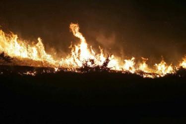 Incendios en San Mamede  - FOTO: CEDIDA - Archivo EP