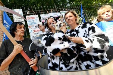Activistas por los derechos de los animales protestan en contra del Festival de Yulin, el festival anual de la carne de perro, en Roma, Italia - FOTO: EFE/ Ettore Ferrari