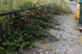 Acera inutilizada en Puente do Romaño