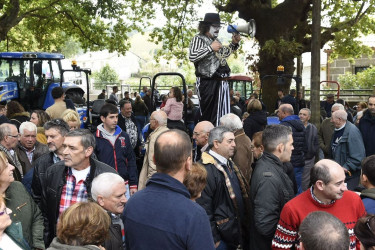 Festas de San Martiño en Teo