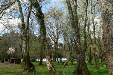 Sitios para ir de pícnic cerca de Santiago