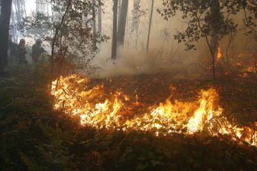 Incendio en Guitiande, Brión