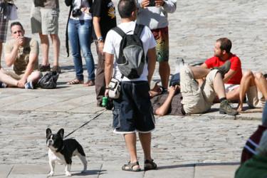 Turistas y peregrinos abarrotan el Obradoiro