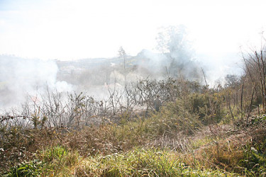 Incendio en San Lázaro