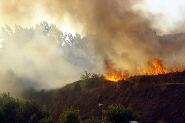 Galicia en llamas. Incendio en Fontiñas, enviadas por B.R.G