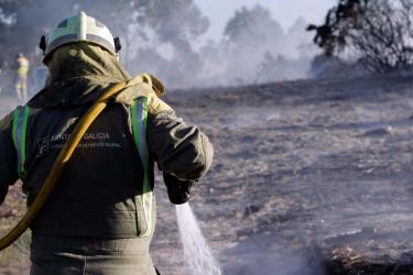 Incendio forestal en Ferrol