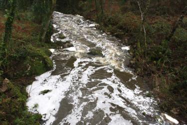 Vertido de purines al río San Xusto