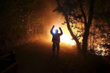 Incendio forestal en la parroquia de Burgueira en Oia (Pontevedra)