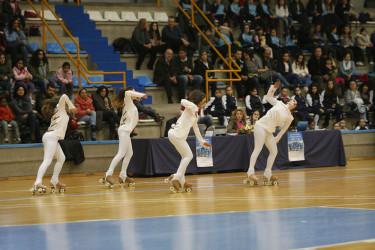 XIII Campeonato gallego Grupos Show de patinaje artístico