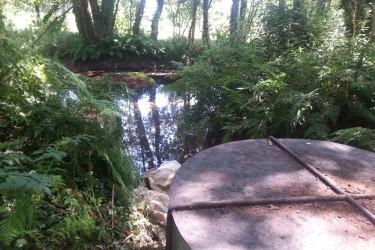Sin caudal el Río Pego en un tramo de 800m en Brión