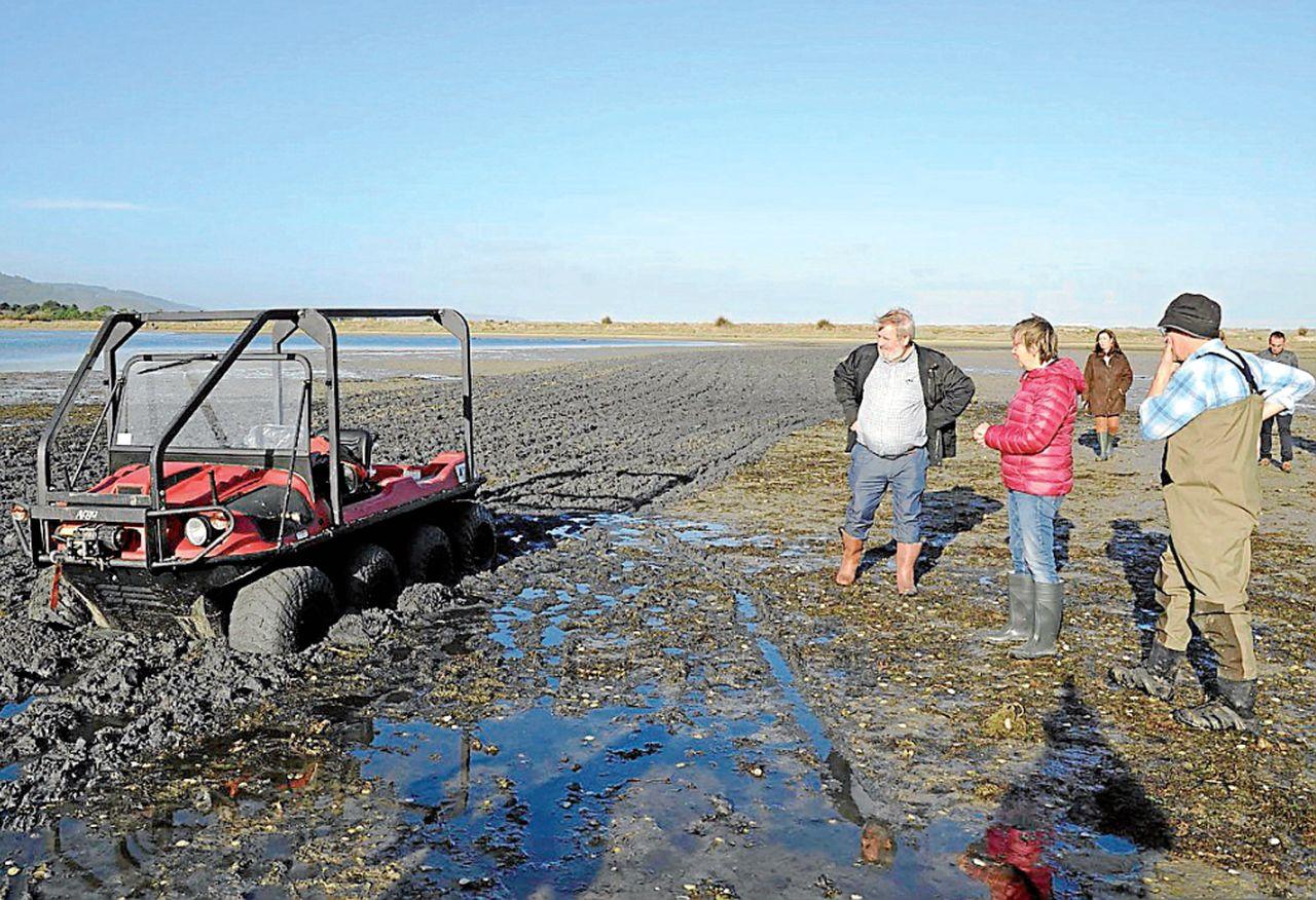 Los trabajos de arado en los bancos de Baldaio se realizan con un vehículo anfbio - FOTO: Consellería do Mar