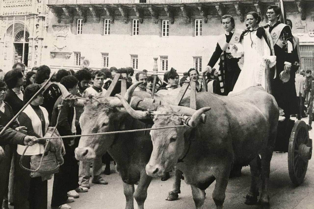 Los novios que se casaron durante uno de los festivales 'tuneros' llegaron a la Catedral en un carro de bueyes