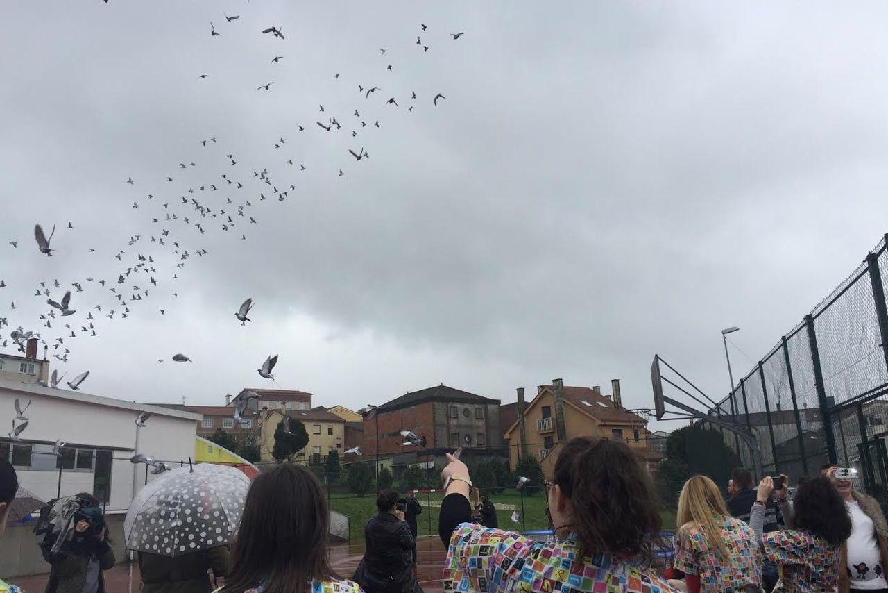 Las escuelas infantiles de Compostela conmemoraron el Día de la Paz 2017 soltando palomas  - FOTO: Concello de Santiago